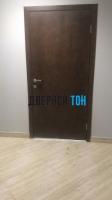 Гладкая шпонированная дверь
